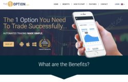 The 1option website