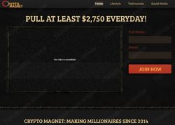 Crypto Magnet official web