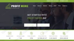 Profit More official web