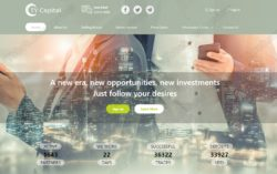 TY Capital Investment website