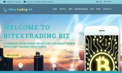 Bitex Trading official website
