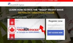 Weed Profit System website
