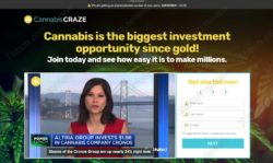 Cannabis Craze official website