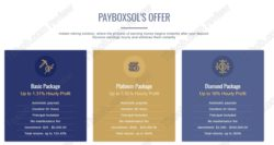 Payboxsol investment offer