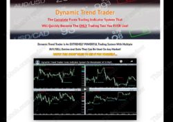 Dynamic Trend Trader review